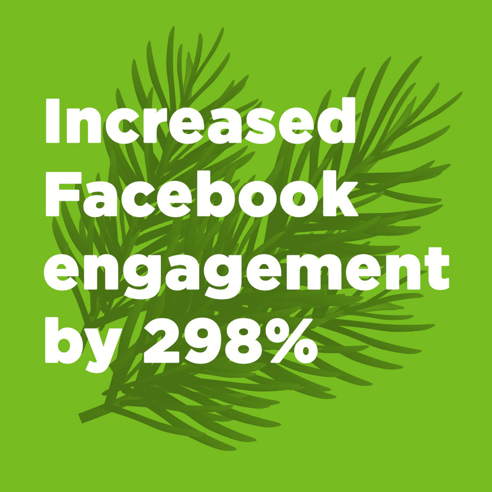 Increased Facebook engagement by 298%.